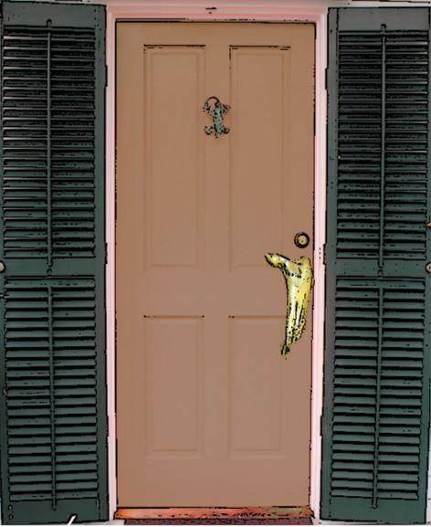 Rogue Door